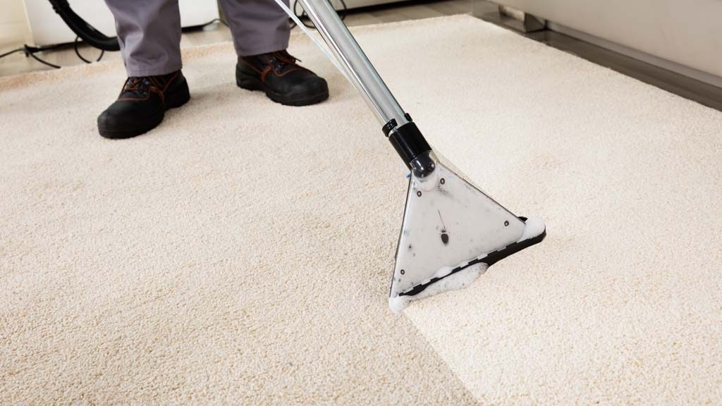 Liability Issues Associated with Dirty Carpets