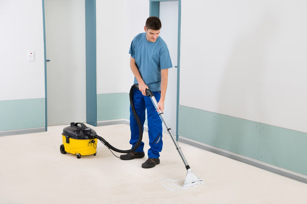 professional port orange carpet cleaning